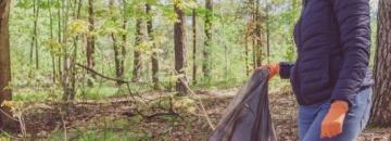 Urzędnicy oraz pracownicy jednostek miejskich rozpoczęli akcję sprzątania augustowskich lasów. Planują oczyścić ponad 10 hektarów w trzy dni! Przeczytaj artykuł i dowiedz sięwięcej.